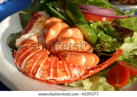 Fresh and delicious seafood meal at Watson Bay, NSW, Australia