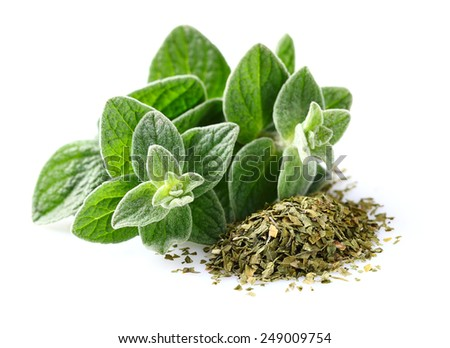 Shutterstock Fresh and dried oregano spices