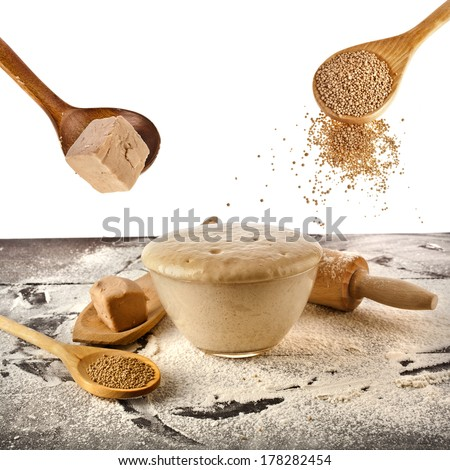 Fresh and dry yeast set isolated on white background