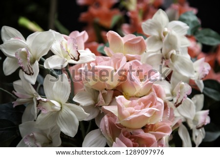 Fresh and fragrant roses, detail of romanticism and love #1289097976