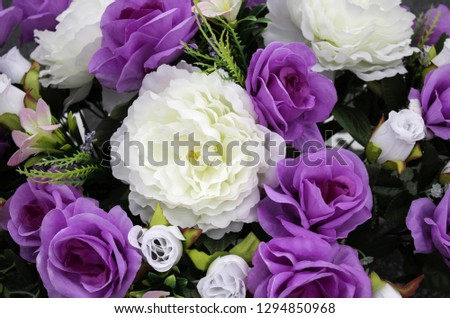 Fresh and fragrant roses, detail of romanticism and love #1294850968