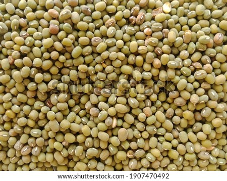 fresh and healthy organic soybeans  Foto d'archivio ©