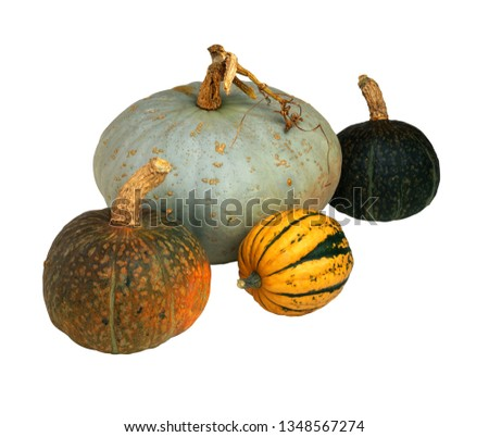 fresh and natural pumpkin picture