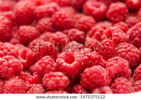 Fresh and sweet red raspberries texture background. Raspberry fruit pile background. Selection of freshly picked ripe organic raspberries background. Delicious first class raspberries heap background