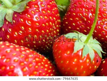Fresh and sweet strawberries in the basket