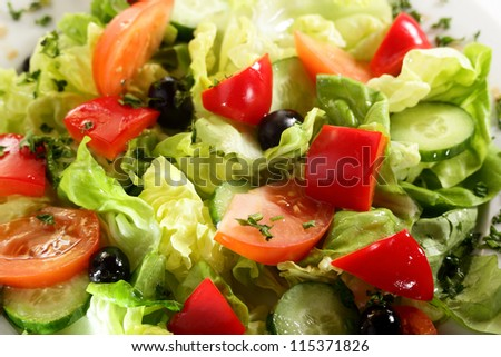 fresh and tasty european salad on white dish