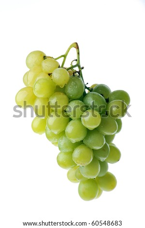 fresh and tasty green grapes isolated