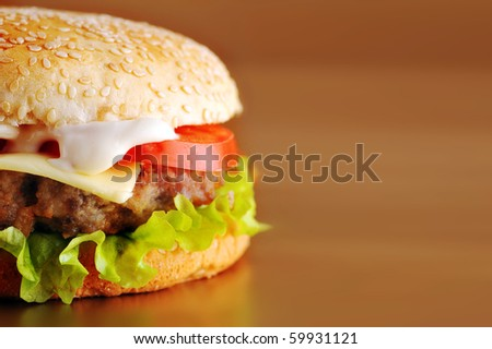 fresh and tasty hamburger with  cheese