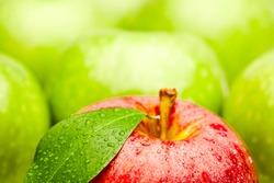 Fresh apple fruits close up