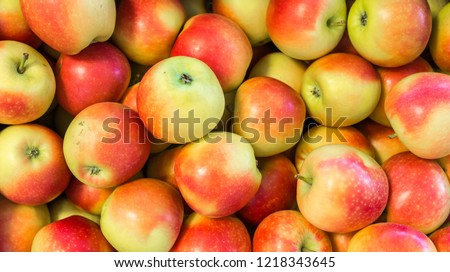Fresh apples variety  KENZI grown in the apple country South Tyrol, northern Italy. Apple suitable for juice, strudel, apple puree, compote.