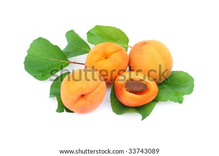 Fresh apricots - isolated on white