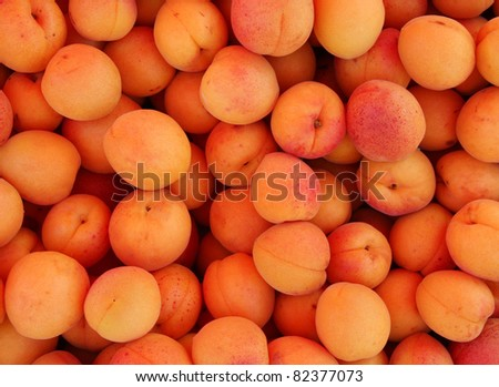 fresh apricots on the market