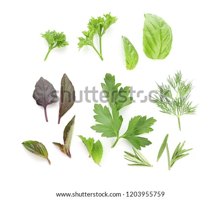 Fresh aromatic herbs on white background #1203955759