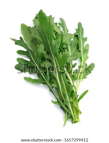 Fresh arugula salad close up. ストックフォト ©