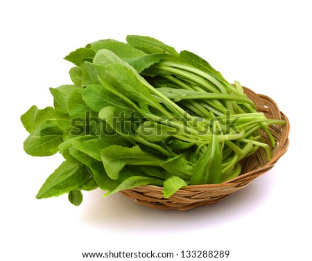 Fresh asian kale lettuce in basket on white