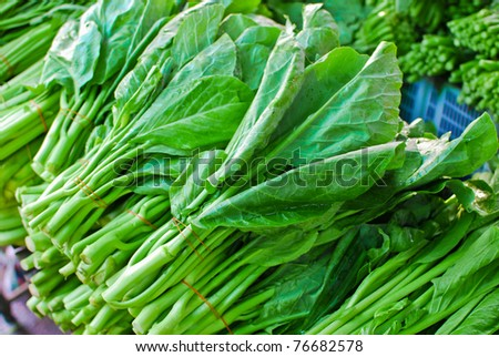 Fresh asian kale lettuce in fresh market , Asia , Thailand