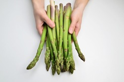 Fresh Asparagus. Green Asparagus. Asparagus in hands of a woman. Green asparagus sticks isolated on white background.