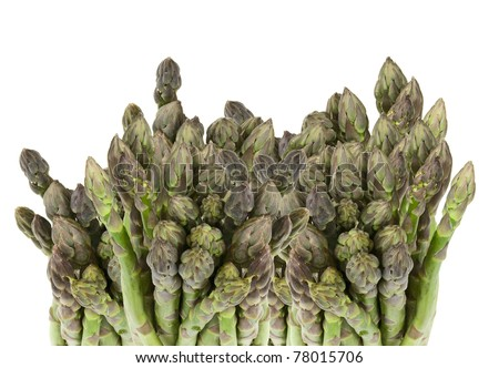 fresh asparagus tips on a white background