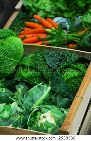 Fresh assorted vegetables in boxes on farmer\'s market