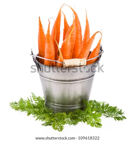 fresh baby carrots in an iron beam of the bucket with fresh herbs, isolated on white background