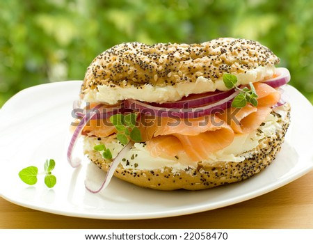 fresh bagel with salmon
