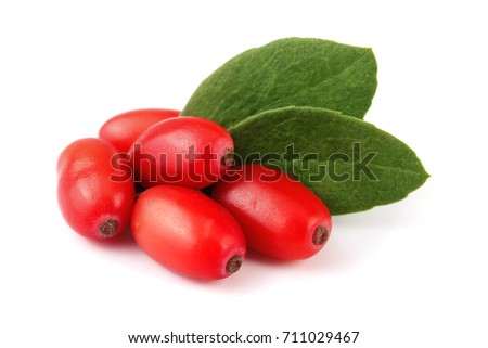 fresh barberry with leaves isolated on a white background Stock photo ©