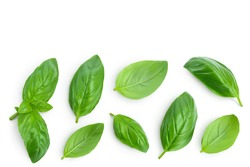 Fresh basil leaf isolated on white background with clipping path and full depth of field. Top view with copy space for your text. Flat lay
