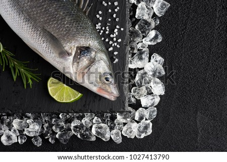 Fresh bass fish on ice on a black stone table top view