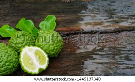 Fresh bergamot fruit on a wet wood as a background (Citrus,Citrus auraria,Citrus balincolong ,Fortunella sagittifolia,Papeda rumphii) #1445137340