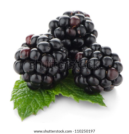 Fresh berry blackberry with green mint leaves isolated on white background.