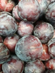 Fresh black plums close up