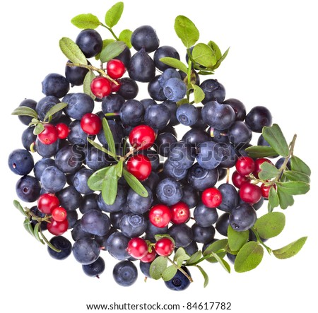 fresh  blueberries and cranberries  isolated  on white