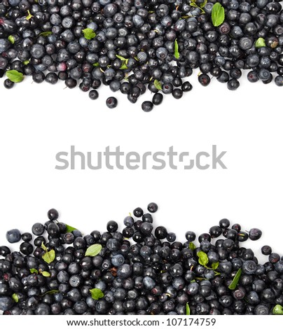 Fresh Blueberries Border Isolated on a White Background. - stock photo