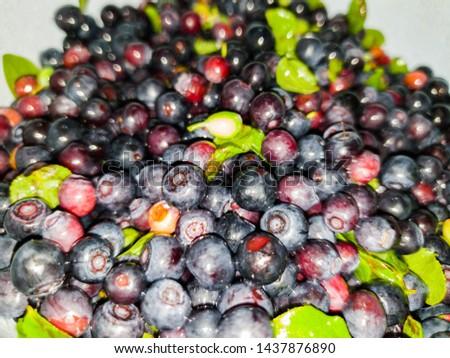 Fresh blueberries. Fresh blueberries im the close-up #1437876890