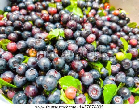 Fresh blueberries. Fresh blueberries im the close-up #1437876899