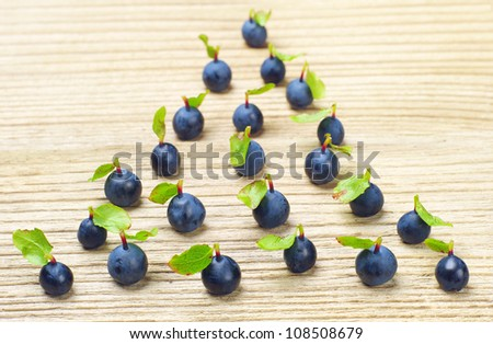 Fresh blueberries, located in the form of fir-tree