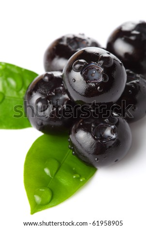 Fresh blueberries with a drop of water close-up