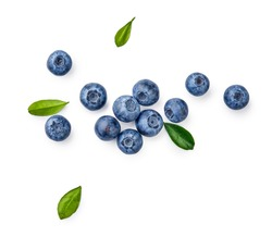 Fresh blueberries with bluberry leaves isolated on white background. Top vew.