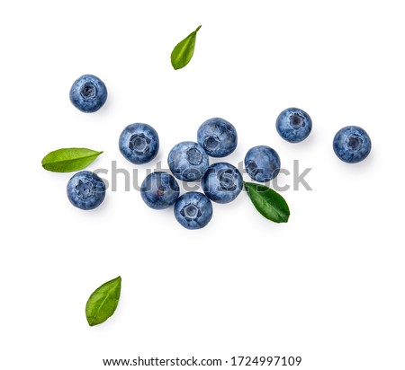 Fresh blueberries with bluberry leaves isolated on white background. Top vew. Photo stock ©