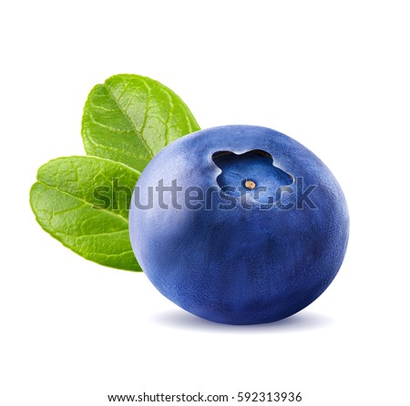 Fresh blueberries with leaves. Berry isolated on white background by clipping path. Macro.