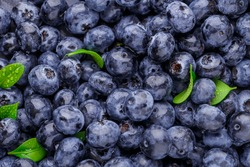 Fresh blueberry background. Blueberry Texture Close Blueberry Antioxidant Organic Superpeed Bowl Concept Healthy Nutrition