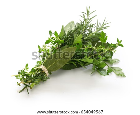 fresh bouquet garni, bunch of herbs isolated on white background #654049567