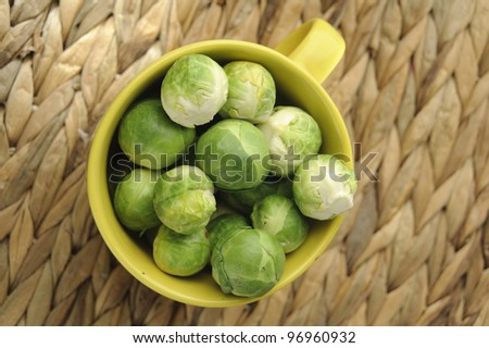 Fresh broccoli - stock photo