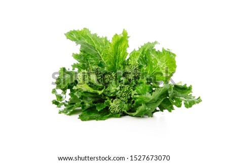 Fresh broccoli Rabe isolated on a white background Foto stock ©