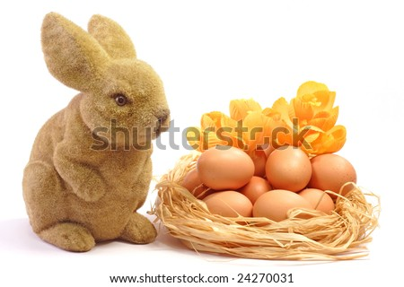 Fresh brown eggs composition with Easter Bunny