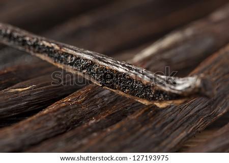 Fresh Brown Organic Vanilla Bean against a background