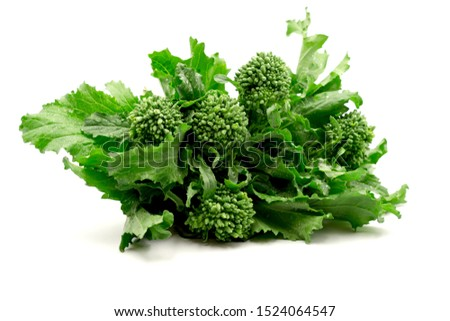 Fresh bunch of raw green organic broccoli rabe- rappini on white background Foto stock ©