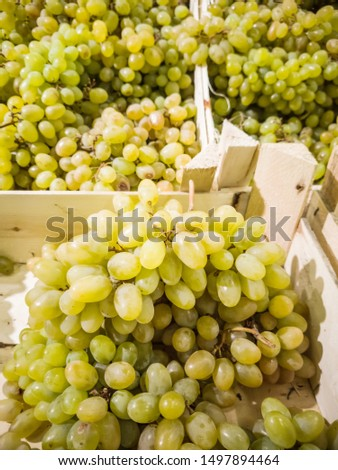 Fresh bunches of grapes close-up on the market. The concept of harvest, organic products, discounts, trade.