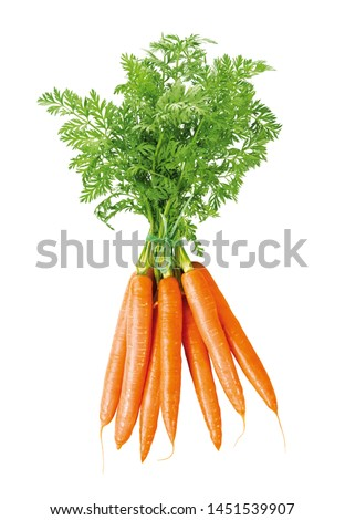 fresh bundle of carrots, isolated