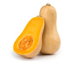 Fresh butternut squash isolated on a white background